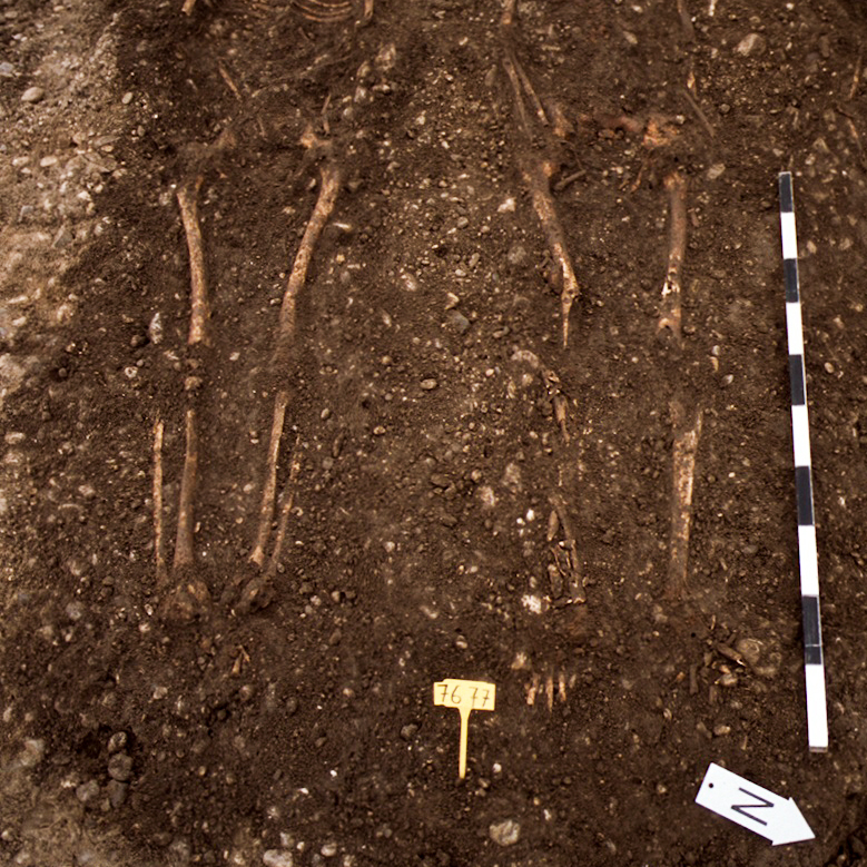 Housing developers outside Munich found skeletons of people killed by the Justinian plague during the 6th century.