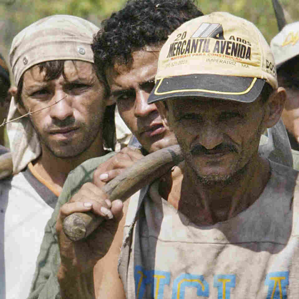 Brazil's Slaves Are Being Freed, But Owners Go Largely Unpunished