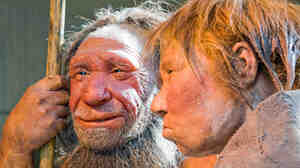 Love your hair. Artists' depictions of a Neanderthal man and woman at the Neanderthal Museum in Mettmann, Germany.