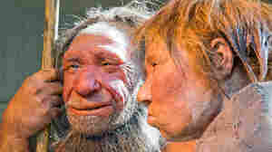 Neanderthal Genes Live On In Our Hair And Skin