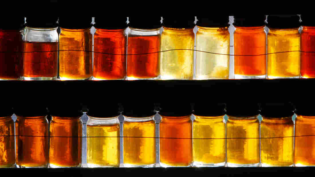 It's All Grade A Now: Different grades of maple syrup are displayed in East Montpelier, Vt.