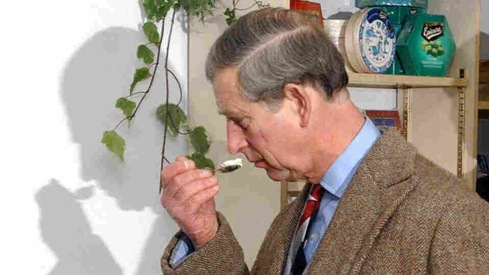 Charles, Prince of Wales, smells before tasting some ice cream during a visit to Gloucestershire. Maybe he was sniffing for fat?