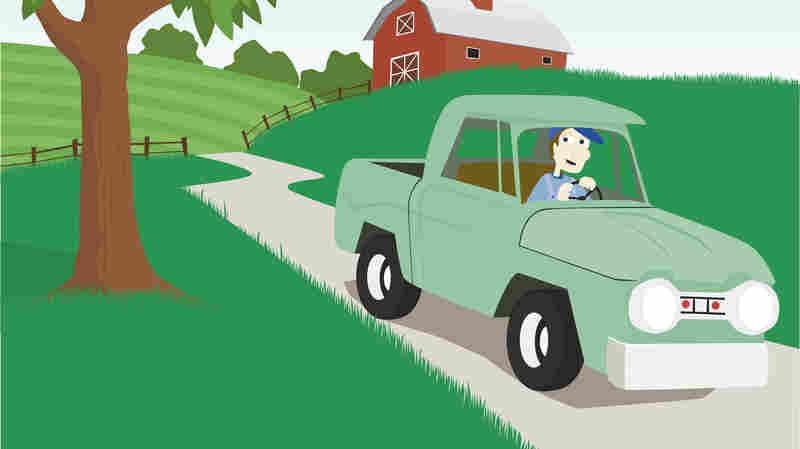 I Like Big Trucks And I Cannot Lie: Cars, Trucks, And The Lady Brain