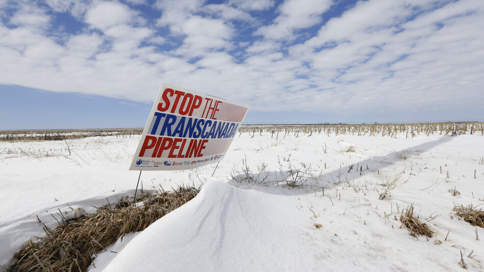 The proposed Keystone XL pipeline will run through this field near Bradshaw, Neb.