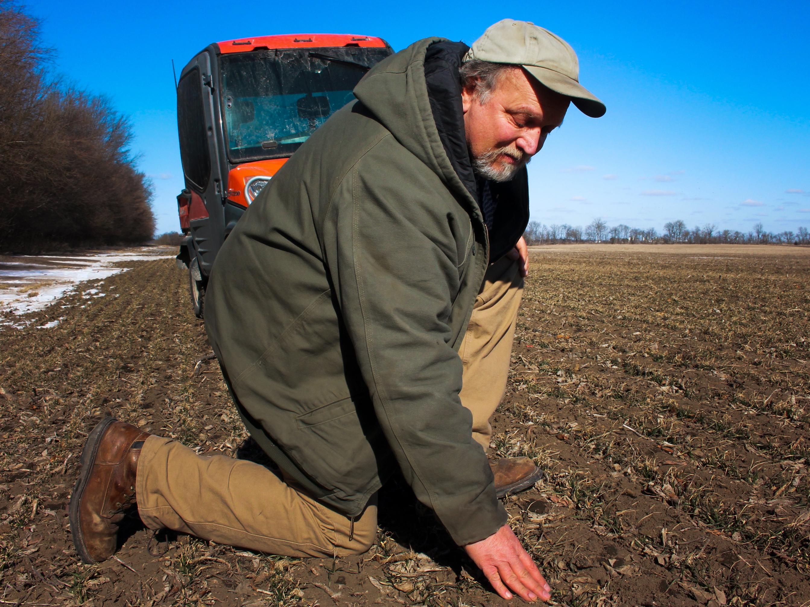 How American Food Companies Go GMO-Free In A GMO World