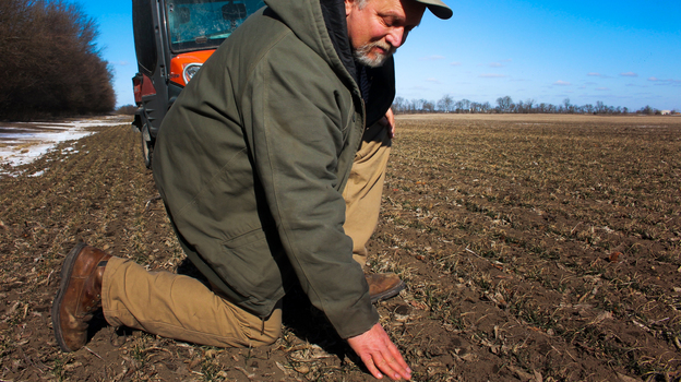 Allen Williams grows corn and soybeans for Clarkson Grain, which has been selling GMO-free grain to Japan for years. (Dan Charles/NPR)