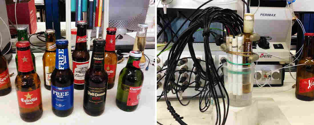 Robot Beer Party: The electronic tongue works by using its array of sensors to identify the chemical components in a solution. Researchers taught the tongue how to distinguish among five distinct beer types.