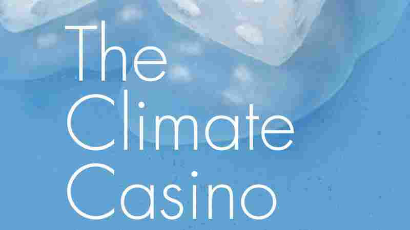 The Climate Casino by William Nordhaus looks at the economics and politics of global warming.