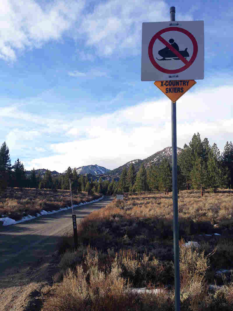 """A cross-country ski trail,€"""" with no snow,€"""" outside Mammoth Lakes, Calif."""