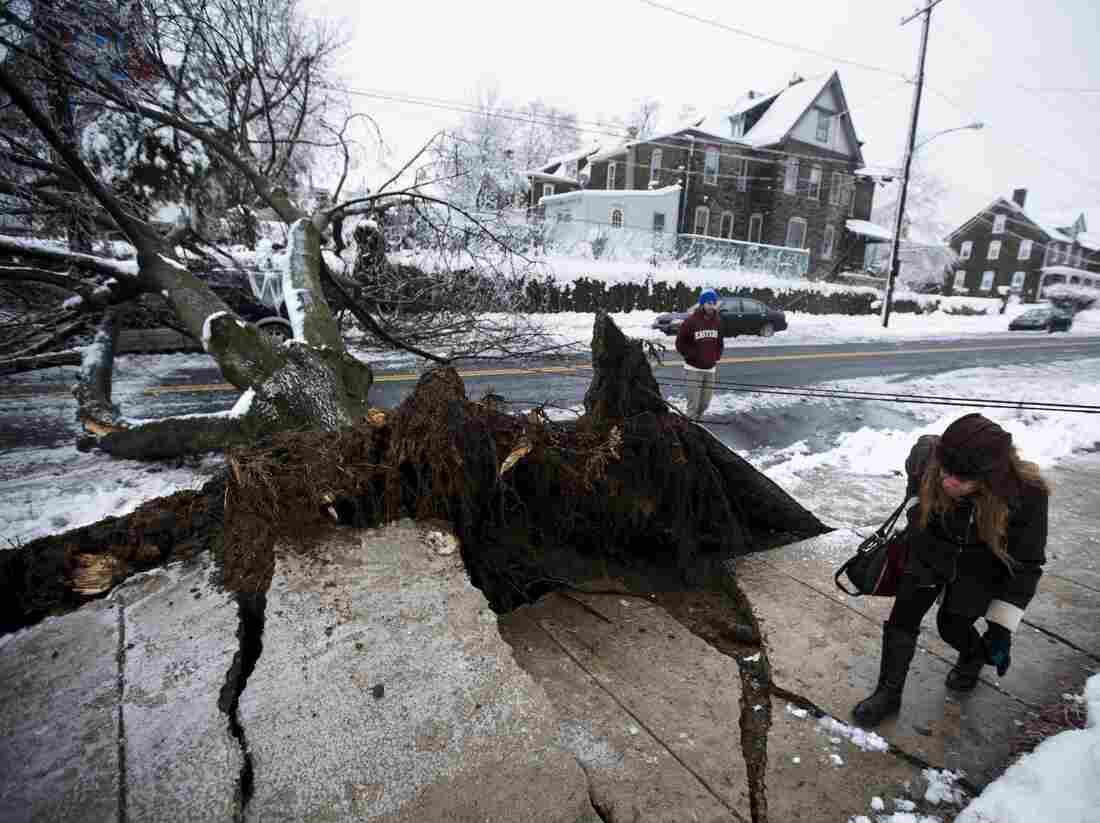 In Philadelphia on Wednesday, a woman ducked under a utility line that was brought down when an ice-covered tree fell.
