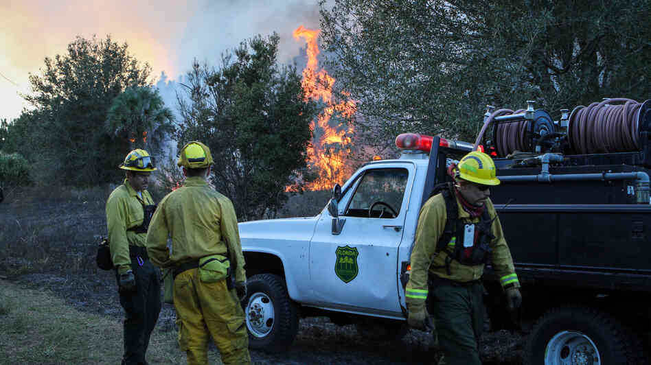 Crews work a controlled burn in Geneva, Fla., in December. The state's forest service has rolled out a system to track equipme