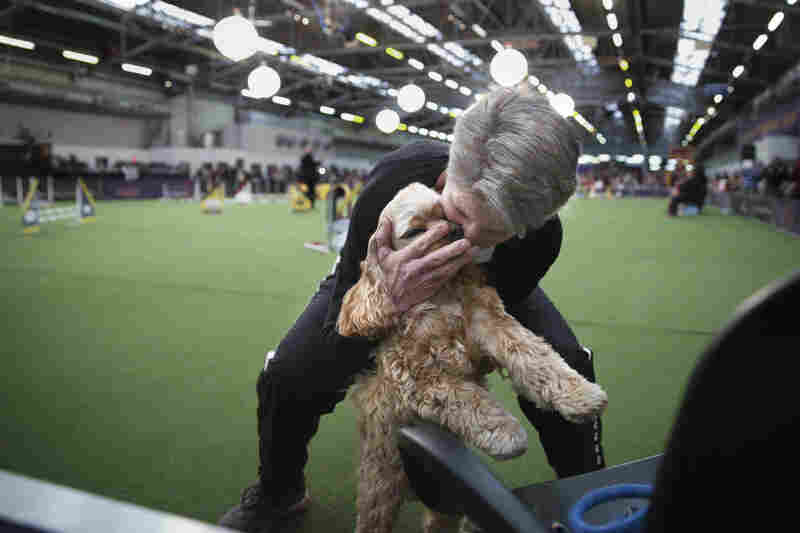 Martha Gurney hugs Dillon, a cocker spaniel, after completing the jumpers course. The dogs ran with gusto and finished with joy, no matter how well they scored.
