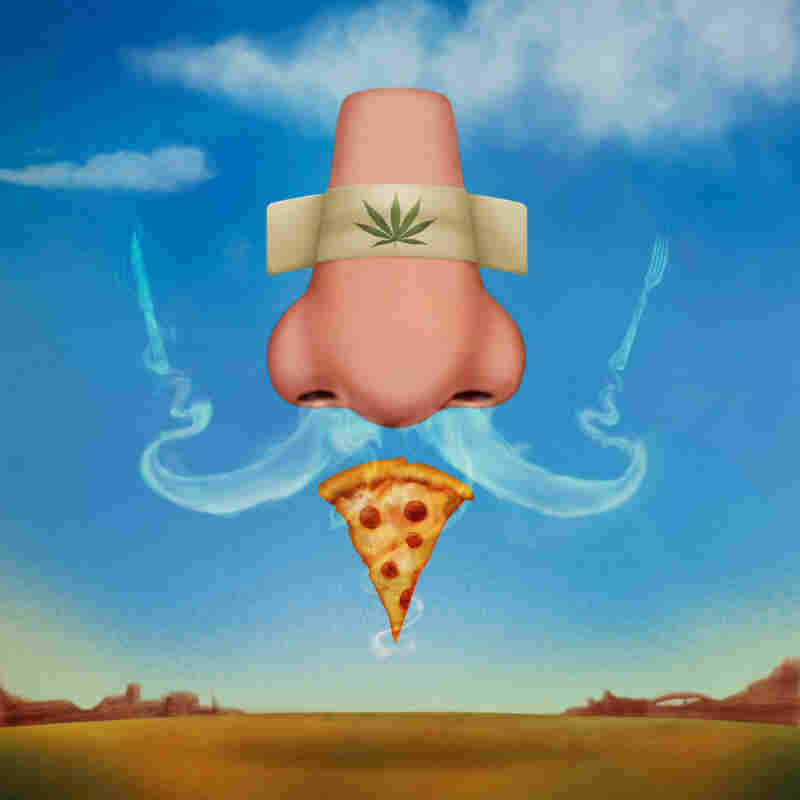 We Didn't Make This Up: The scientists who performed the study on how cannabis triggers the munchies through the sense of smell commissioned an artist to put this illustration together.