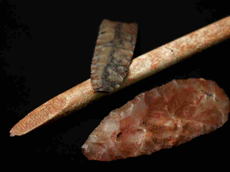 Until recently, finding characteristic stone and bone tools was the only way to trace the fate of the Clovis people, whose culture appeared in North America about 13,000 years ago.
