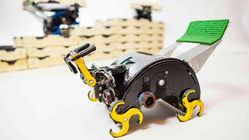 Climbing robots, modeled after termites, can be programmed to work together to build tailor-made structures.
