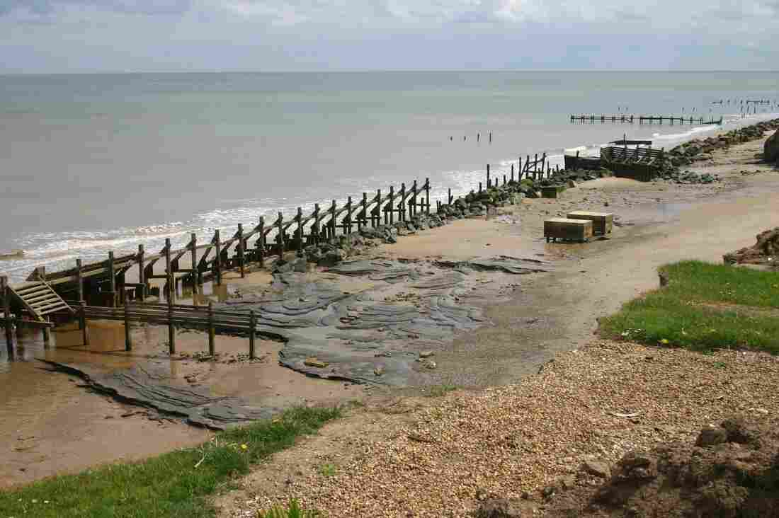 Area A of the Happisburgh archaeology site in Norfolk, Britain, where coastal erosion has revealed mudflats containing 800-thousand-year-old footprints.