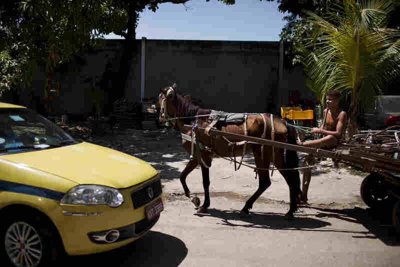 A youth guides his horse and cart down the main road of Vila Autodromo, an area where many families have been evicted and moved to far away neighborhoods. Construction on the Olympic Village is taking place nearby.