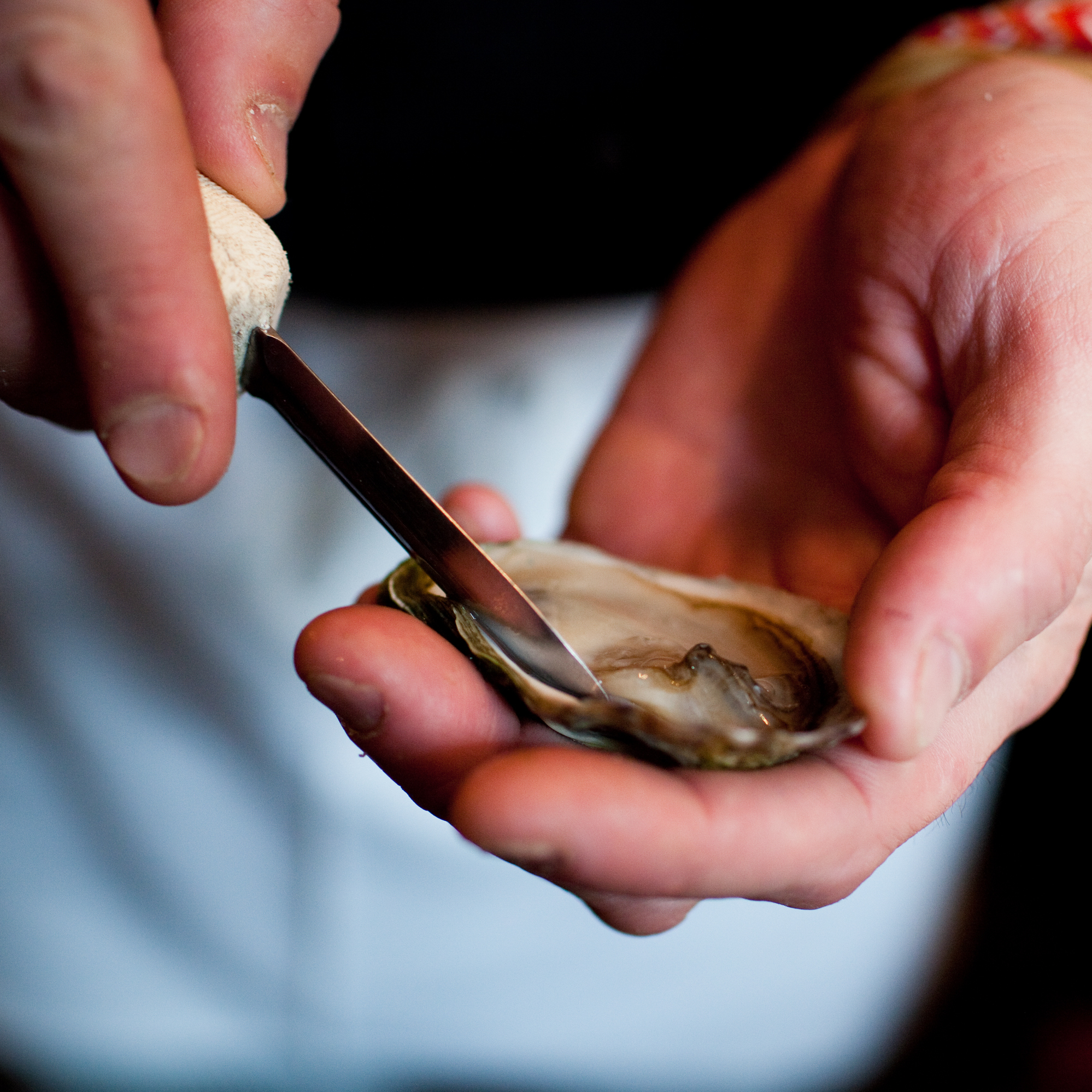 Then slice along bottom, make sure you hold steady to preserve the liquor inside. Your oyster will now slide right off.