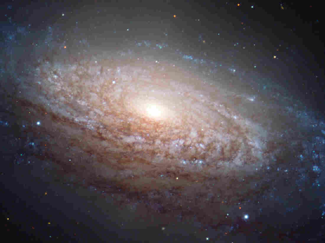 The spiral galaxy known as NGC 3521 lies in the constellation of Leo, a mere 35 million light-years away. Now go flush and see if you understand the connection between the two.