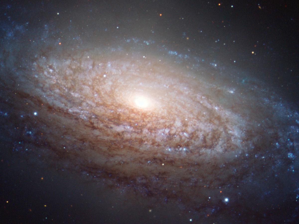 how to see a galaxy in your toilet bowl 13 7 cosmos and culture npr. Black Bedroom Furniture Sets. Home Design Ideas
