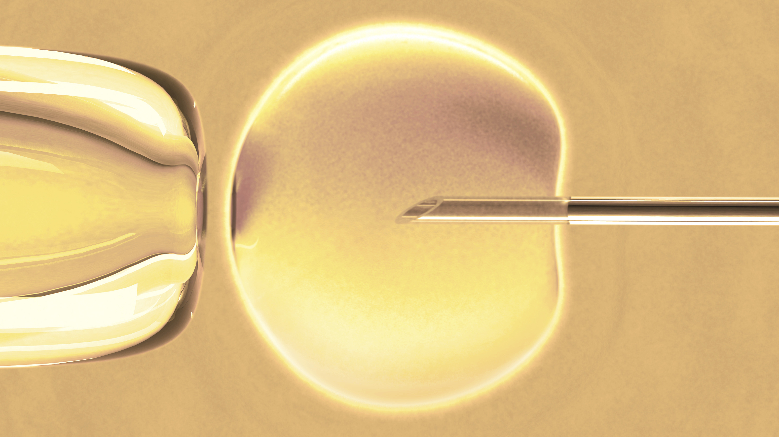 IVF Baby Boom: Births From Fertility Procedures Hit New High