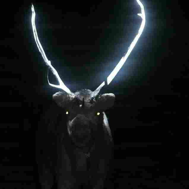 His antlers are so bright.