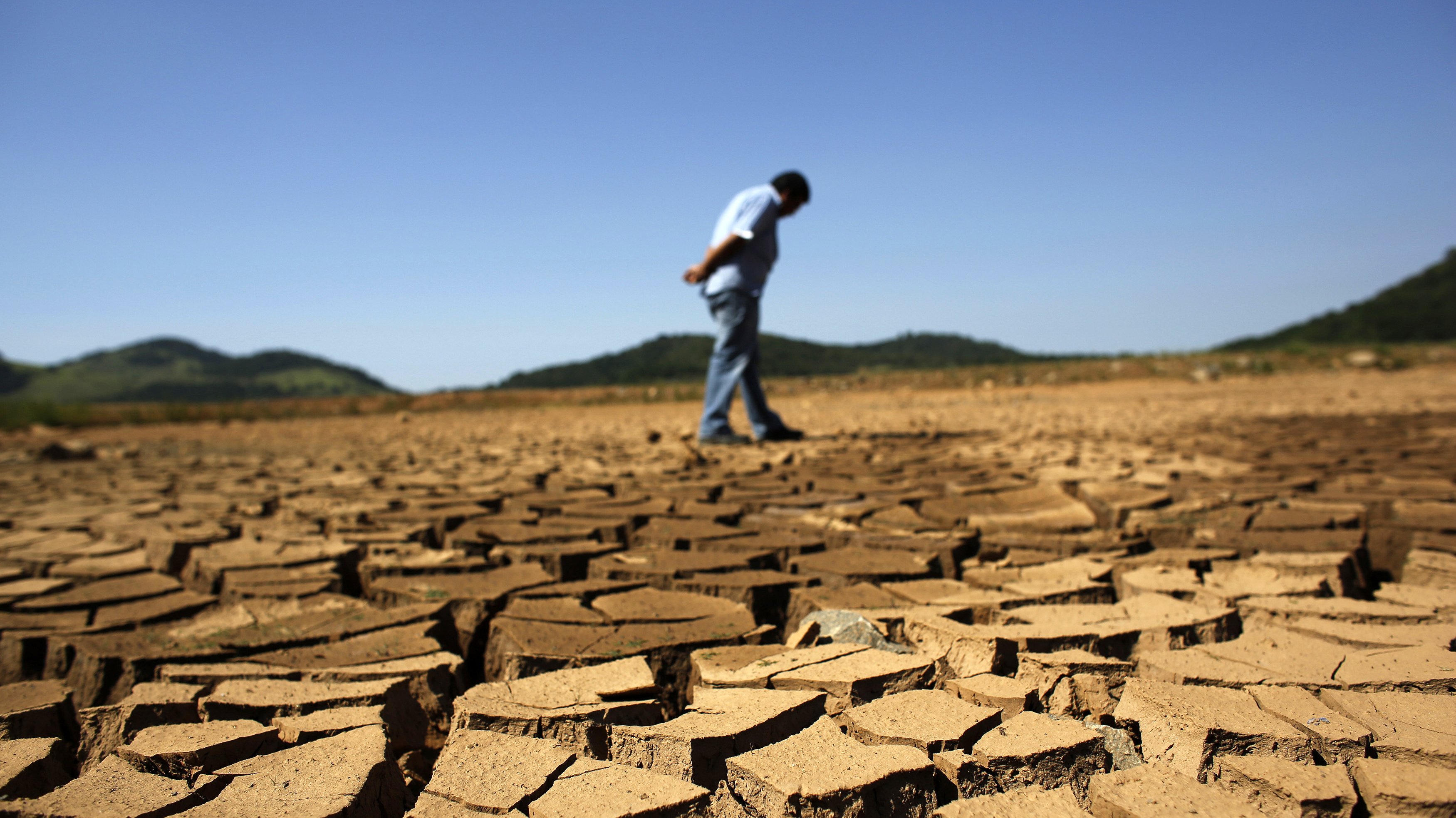 Drought Could Drain More Than Brazils Coffee Crop NCPR News - Brazil's tallahassee