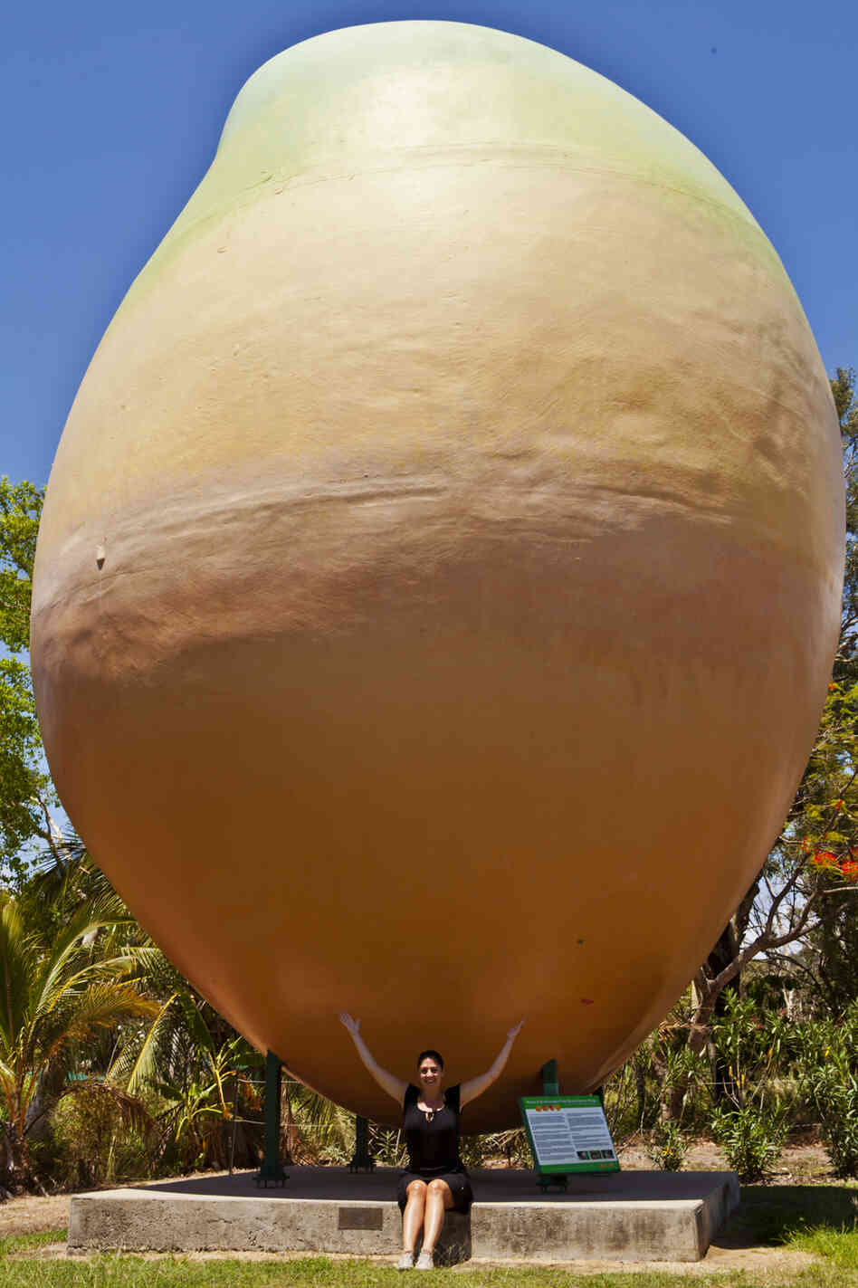 The Big Mango in Bowen, Australia, seen here in 2011, disappeared overnight, surprising people who live near the 33-foot-tall sculpture.