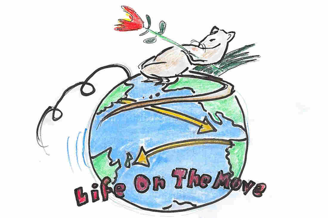 "4. ""Life on the Move"""