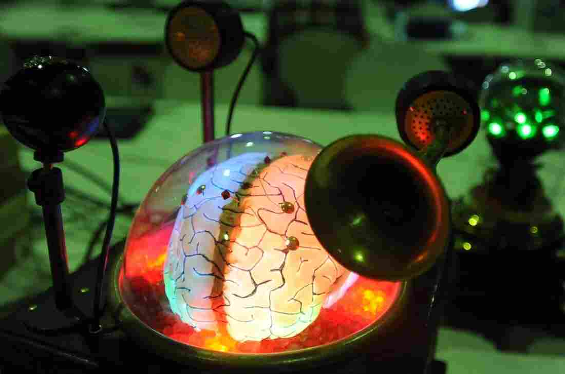 A computer designed by hobbyists to look like a brain on display at a Berlin fair in 2012. What happens when we go from crude models to complete working simulations of this all-important organ?