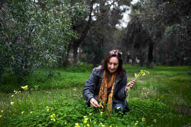 "Tsitoura picks wildflowers while on a visit at Hellenic Shipyards. ""If I can't bring my children my wages, at least I can bring them some flowers,"" she said with a laugh."