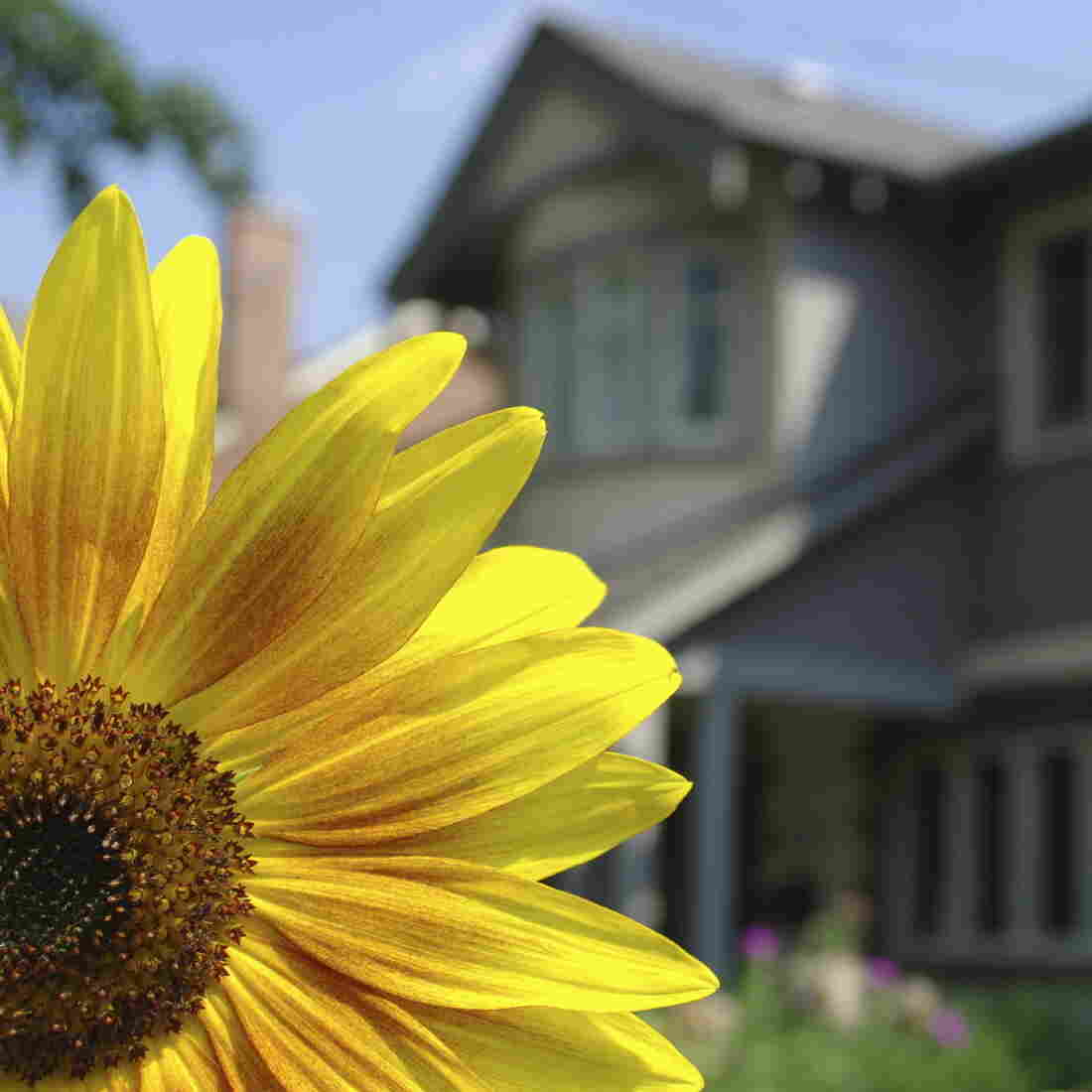 Marching Into Spring, Realtors' Hopes Rise