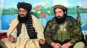 Pakistani Taliban Promise Cease-Fire To Resume Peace Talks