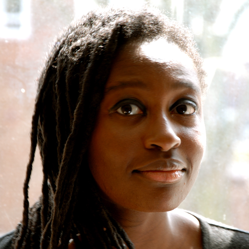 Helen Oyeyemi's previous books include Mr. Fox and The Icarus Girl, written when she was still a student.