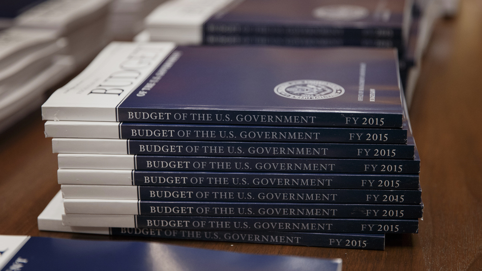 Copies of President Obama's proposed budget for fiscal 2015, after they were delivered to the Senate Budget Committee on Tuesday. (AP)