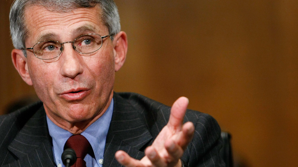 """While not conclusive, the two cases are """"quite promising,"""" says Anthony Fauci, a longtime AIDS researcher who directs the National Institute of Allergy and Infectious Diseases."""