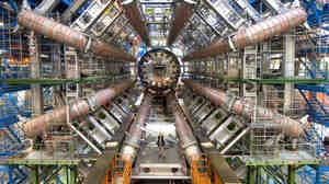 Yes, that is a man standing there, in the middle of this one small fraction of one experimental node of the Large Hadron Collider.