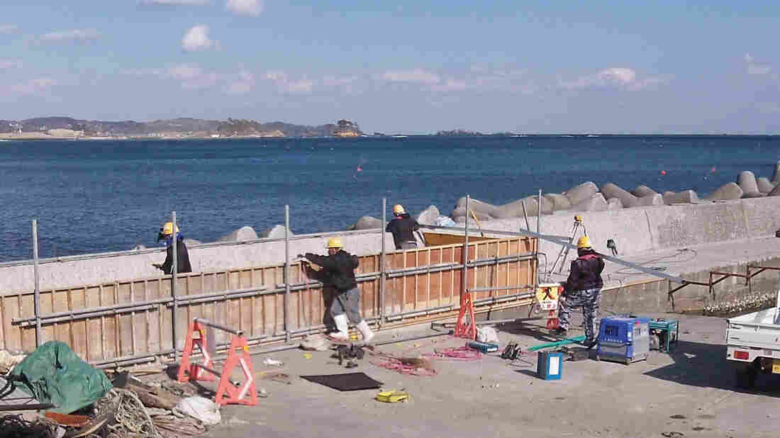 Workers build a concrete barrier along the coast of suburban Kesennuma, northeastern Japan, which was hard hit by the devastating tsunami in 2011. Nationwide, Japan has poured concrete to defend nearly half of its shoreline. Critics say much of it is unnecessary.