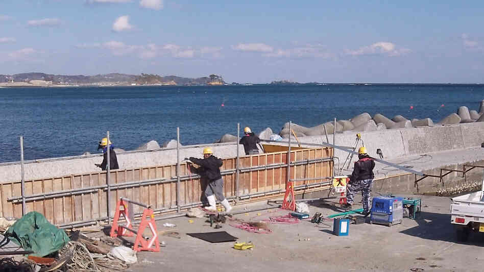 Workers build a concrete barrier along the coast of suburban Kesennuma, northeastern Japan, which was hard hit by the devastating tsunami in 2011. Nationwide, Japan has poured concrete to defend nearly half of its shoreline. Critics say much of i