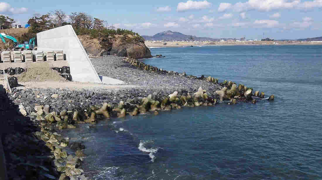 A sea wall on the outskirts of the port city of Kesennuma. Some residents say high walls are too expensive and destroy scenery, wildlife and popular beaches. The government has proposed sea walls that will stretch for more than 200 miles and will be 30 feet high in some places.