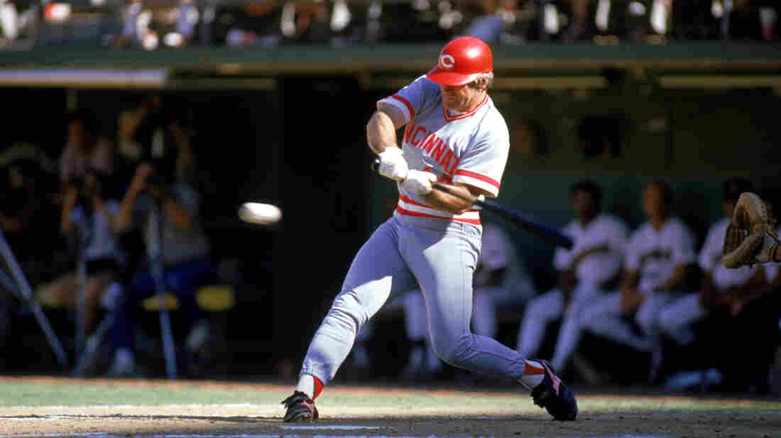"Pete Rose swings for the Cincinnati Reds in the 1985 season. Rose, aka ""Charlie Hustle,"" famously ran to first base even when he was given a walk."