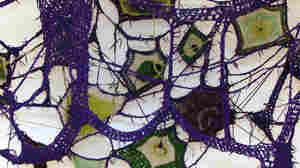 Sheila Pepe, Your Granny's Not Square, 2008, Crocheted shoelaces and yarn, 84 x 144 x 48 in.