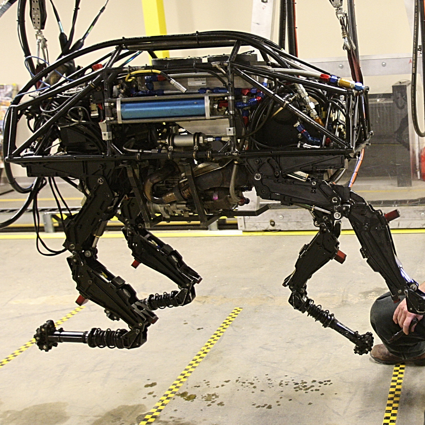 A BigDog robot at Boston Dynamics in 2010. One of the company's robots, called BigDog, is being developed to help soldiers carry heavy equipment in the field. It can follow a human being, walking across wet/sandy/rocky terrain, just like a dog would.
