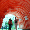Many people think that colon cancer screening is no walk in the park. This giant inflatable colon on display at the University of Miami Health System campus was intended to help them think otherwise.