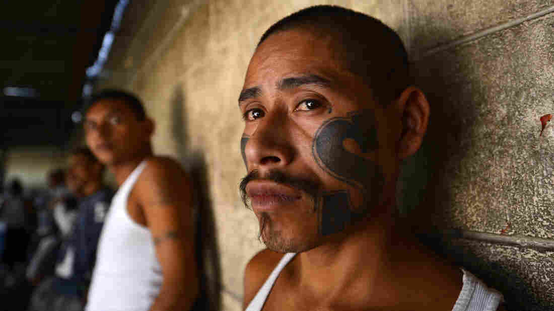 Members of Mara Salvatrucha (MS13) jailed 100 miles east of El Salvador's capital San Salvador. A 2012 truce has reduced gang violence, but it remains a problem in an impoverished, polarized country.