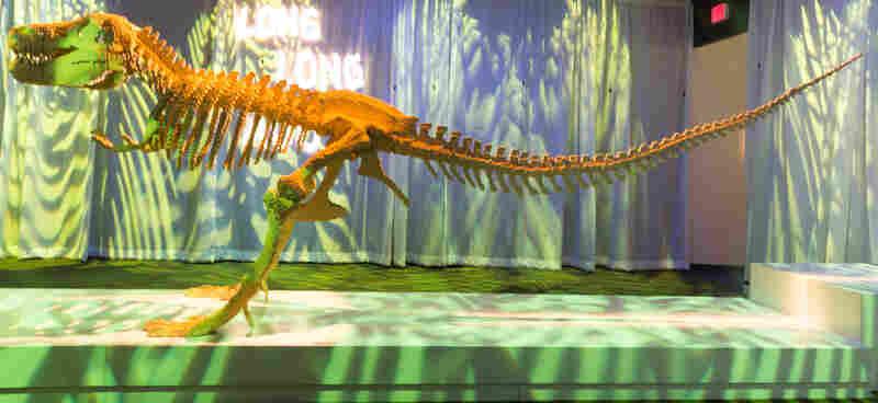 Dinosaur Skeleton by artist Nathan Sawaya.