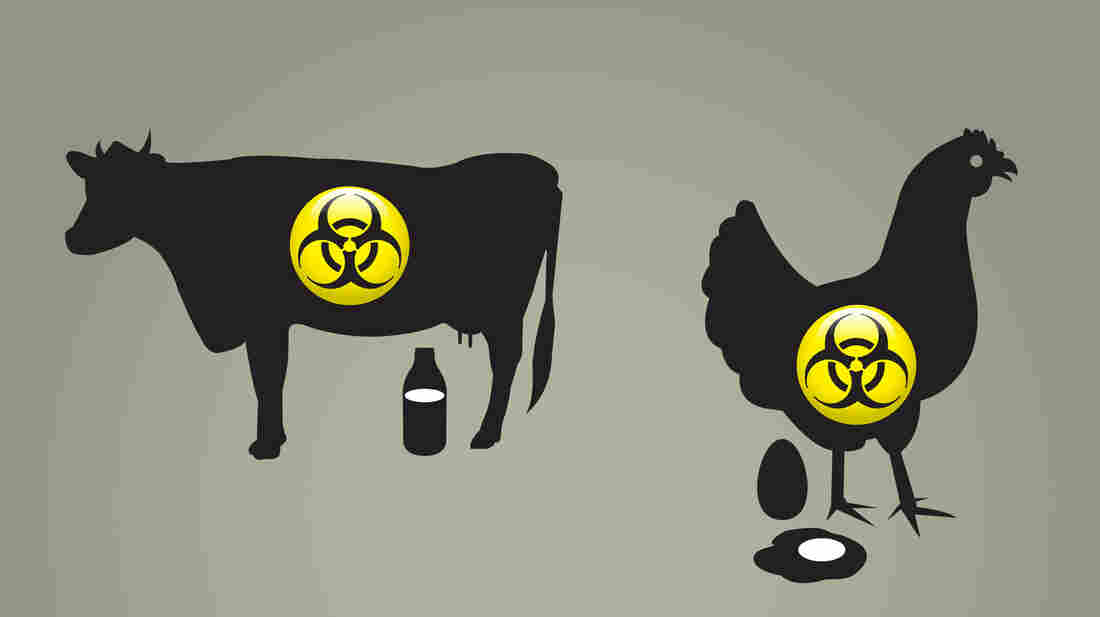 Few livestock owners consider their operations targets of terrorism. And that mindset could leave them vulnerable.