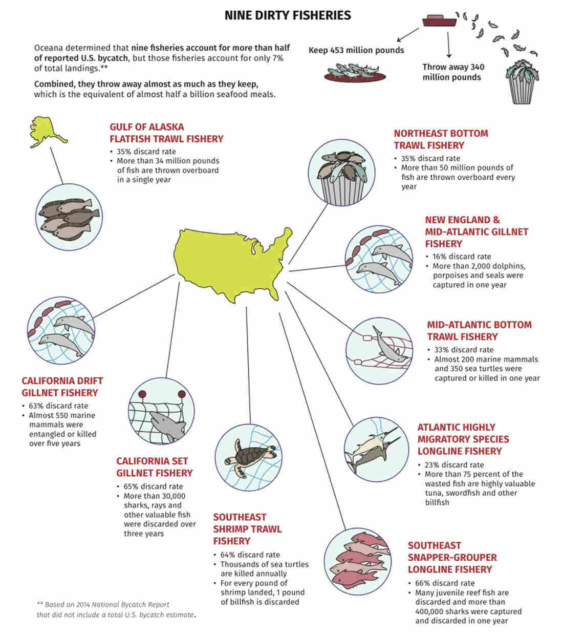 Nine fisheries account for more than half of the reported U.S. bycatch.