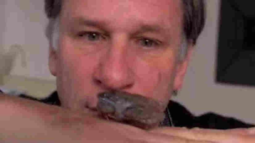 Robert Krulwich stares at a frozen frog.