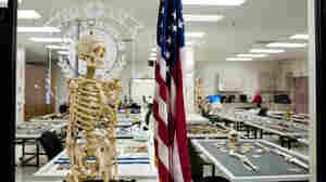 Pentagon Reorganizing How It Brings Home America's War Dead